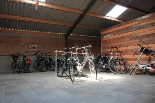 Camping de Zandberg Faciliteiten 4