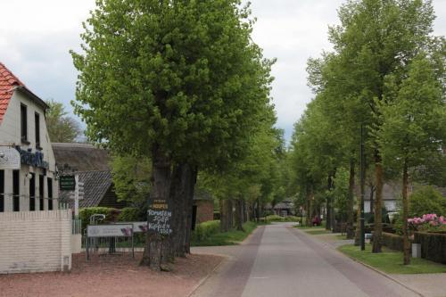 Camping de Zandberg Leenderstrijp 9
